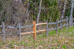 Fancy Fence. (Omygodtom) Tags: fancyfence smileonsaturday forest mountain trail path wood ceder nikkor nikon d7100 nikon70300mmvrlens oaksbottom outdoors scene