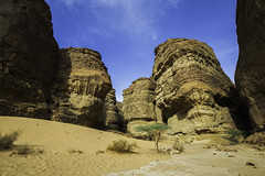 Standing strong (timfeld1) Tags: desert saudi arabia blue sky rocks cliff valley ruins ancient landscape green trees