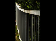Increasingly high fence (Roberto Monti) Tags: smileonsaturday fancyfence 18052019 138365 2019pad