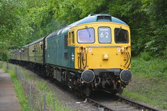 33108 Country Park Halt 18/05/19 (yamdood91) Tags: 33 33108 class rail railway severn valley hampton loade preserved br blue crompton svr diesel gala 2019 spring