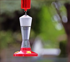 New Feeder (Sue90ca Flick*r is a huge pain in the butt today) Tags: canon 6d hummingbird feeder noperch