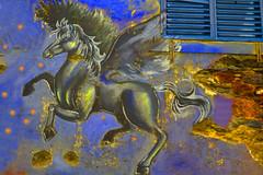 citty grafitty art in funchal (Marco Braun) Tags: walart graffiti stencil streetart black white weiss blanche noire schwarz schablone 2018 colourful colored couleures farbig bunt madeira portugal pegasus pegas chimäre amsterdam holandniederlande