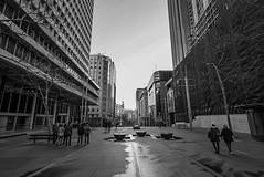 DSC01279 (Damir Govorcin Photography) Tags: martin place sydney cbd blackwhite monochrome people buildings composition architecture sony a7ii zeiss 1635mm
