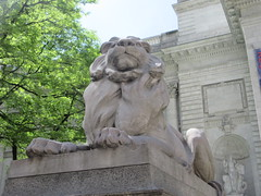 2019 Lion Under Shady Branches New York Public Library 8730 (Brechtbug) Tags: 2019 lions new york public library statues lion hanging shadows 42nd street 5th avenue nyc 05182019 may springtime soon spring weather eventually animal cat feline statue sculpture art cats ave st gargoyles gargoyle reclining repose resting facade stairs front entrance
