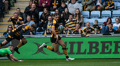 Josh Bassett takes his try after Willie Le Roux assist (davidhowlett) Tags: ricoharena quins wasps premiership waspsrugby gallagher rugbyunion ricoh rugby coventry harlequins