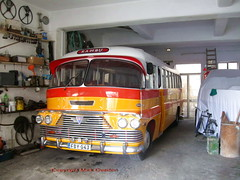 AEC Malta bus FBY043 at home December 2012 (sms88aec) Tags: