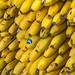 Mercado Central de Atarazanas Bananas