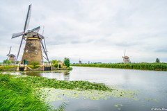 Kinderdijk molens 1 (wietzebron) Tags: kinderdijk alblasserdam dordrecht molen molens windmills netherlands