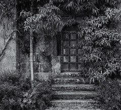 The old doorway (Tim Ravenscroft) Tags: doorway old overgrown steps ancient lanhydrock house cornwall england monochrome blackandwhite blackwhite hasselbladx1d hasselblad