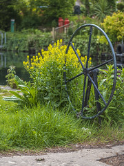 Old Canal Lock Wheel (Chris Lawrence Photos) Tags: marina coast chichester birdham canal lock wheel vintage bush