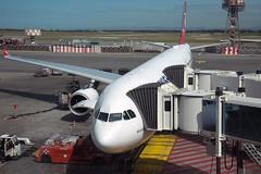 8V8A3332.TC-JOD.A333.THY.DJ (JaffaPix +5 million views-thanks...) Tags: davejefferys jaffapix jaffapixcom aeroplane aircraft aviation airplane plane planespotting airline airliner airport fco lirf fumicino romefumicino