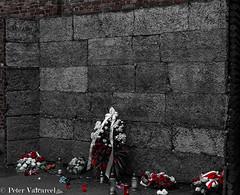 Krakow Poland (Peter Valcarcel) Tags: auschwitzconcentrationcamp holidays holocaust auschwitz humancruelty travel photography phototravel krakow historyhorror travelphotos holiday poland blackandwhite