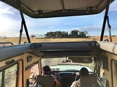 (晒晒太阳不长虫) Tags: tanzania serengeti safari