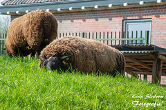 Fotoweekend Brabant-52