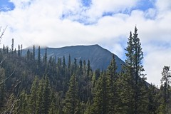 (neukomment) Tags: alaska road nabesnaroad mentastamountains mountains may 2019 spring wiiderness canoneosrebelt5i 18250mmf3563dcosmacrohsm sigmalens
