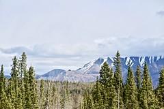 Northern Beauty (neukomment) Tags: alaska road nabesnaroad mentastamountains mountains may 2019 spring wiiderness canoneosrebelt5i 18250mmf3563dcosmacrohsm sigmalens