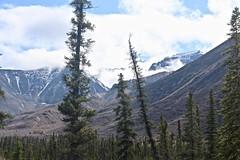 Mountain Wilderness (neukomment) Tags: alaska road nabesnaroad mentastamountains mountains may 2019 spring wiiderness canoneosrebelt5i 18250mmf3563dcosmacrohsm sigmalens