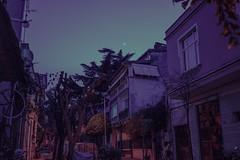 Istanbul (elsableda) Tags: buyukada princes islands istanbul turkiye purple pink blue signs lights twilight