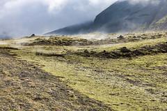 Mist over the moss (erlingurt) Tags: landscape canon eos rp mist moss iceland