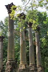 Windsor Ruins (miosoleegrant2) Tags: windsor ruins ms mississippi columns corinthian antebellum greek revival mansion plantation south ancient building tree sky architecture stonework tower