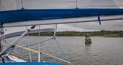 Round the Otter Isles and a sail as far as the Marina........ (apcmitch) Tags: sealmorning ireland causeway coast riverbann ni portrush sea sailing