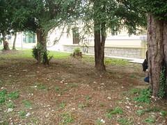 Čišćenje infektivnog otpada 01 12 2007 kapetanski (24)