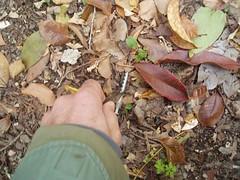 Čišćenje infektivnog otpada 01 12 2007 kapetanski (20)