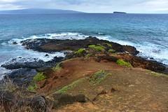 495 (bigeagl29) Tags: makena state park maui hawaii oceanfront beach