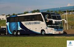 Massaneiro - 2024 (RV Photos) Tags: turismo bus onibus br116 rodoviapresidentedutra massaneiro scania marcopolo marcopolog7 paradiso1600ld trucado