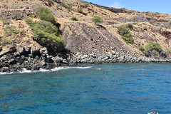 709 (bigeagl29) Tags: maalaea maui hawaii island oceanfront beach scenic scenery