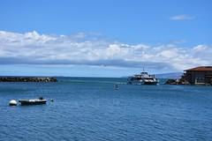 693 (bigeagl29) Tags: maalaea maui hawaii island oceanfront beach scenic scenery
