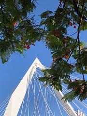 Puente (NIKONIANO) Tags:
