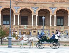 SEVILLA EN PRIMAVERA (ANDALUCÍA / ESPAÑA / SPAIN) (DAGM4) Tags: sevilla españa europa europe espagne espanha espagna espana espanya espainia spain spanien 2019 andalucía