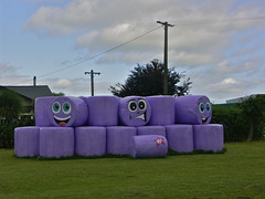 Happy Haybales (Zelda Wynn) Tags: cheltenham manawatu purple haybales faces travel