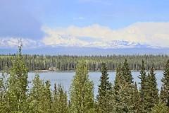 Willow Lake (2) (neukomment) Tags: willowlake alaska may 2019 spring canoneosrebelt5i sigmalens 18250mmf3563dcosmacrohsm