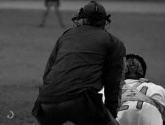 """Take me to the ball game 🎶 "" (bd168) Tags: uniformuniforme baseball receveur catcher referee arbitre mask masque blancetnoir blackandwhite fujifilmxt10 xf90mmf2rlmwr"