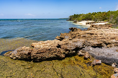 _DSC2683 (Shane Woodall) Tags: 2019 24mm april birthday ella gilligansisland guanica ilce9 lily puertorico shanewoodallphotography sonya9 twins vacation