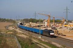 Locon 185 553 + Güterzug/goederentrein/freight train   - Waßmannsdorf (Rene_Potsdam) Tags: wasmannsdorf brandenburg deutschland europe europa railroad treinen trains trenes züge br185 locon