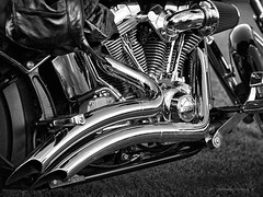 loud pipes (gnarlydog) Tags: australia harleydavidson pipes exhaust monochrome highcontrast manualfocus adaptedlens vintagelens canontv1650mmf14 chrome art blackwhite detail motorcycle abstract industrial machine