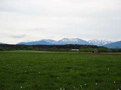 Voralpenblick, 83365 Traunreut (BCHTLCK) Tags: bayern chiemsee bavaria ruhe entspannung alpen voralpen landleben heimat outdoors thegoodlife alps mountains chiemgau