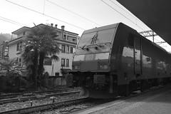 stresa #5 (train_spotting) Tags: stresa lineadelsempione dbcargoitaliasrl lenord ferrovienordmilano nordcargo traxxf140dc e4831075nc bombardier nikond7100