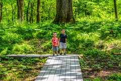 Brothers — Nature Walk (tduaneparker) Tags: nikon tamron2875mmf28 nikond7100 portrait landscape trees boys children brothers kentucky hiking park forest nature