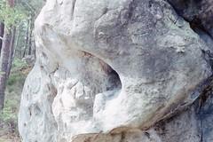 Minoltax300 (a1k3) Tags: boulder fontainebleau elephant skull