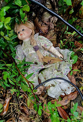 Abandoned Doll (cowyeow) Tags: hongkong forest china chinese asia asian atmosphere composition taimoshan creepy doll abandoned forgotten spooky lost toy child