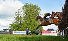 Race 6 - Rules Of War-4 (JTW Equine Images) Tags: p2p point pointtopoint knutsford cheshire tabley nh racing horse equine jockey trainer jumps
