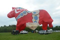 OO-BQH - Willy Naessens paard (Tom_bal) Tags: nikon d7000 oobqh midlands air festival hot balloon flying aviation