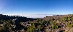 Way back, Kilimanjaro NP, Tanzania (Amdelsur) Tags: parcdukilimandjaro continentsetpays tanzanie afrique africa kilimanjaronationalpark tz tza tanzania kilimandjaro