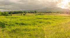 Stillness after the storm... (Uros_N) Tags: landscape slovenia slovenija belakrajina whitecarniola stranskavas meadows pasture sigma nikon spring sunset cloudy clouds forest grass pastures