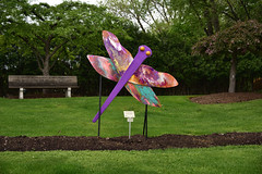 JIM_2921 (James J. Novotny) Tags: dragonflies sculptures sculpture d750 nikon rotarygarden rotarybotanicalgardens gardens garden gardenbotanical unlimitedphotos unlimiedphotos unlimited art artwork