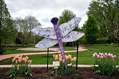 JIM_2882 (James J. Novotny) Tags: dragonflies sculptures sculpture d750 nikon rotarygarden rotarybotanicalgardens gardens garden gardenbotanical unlimitedphotos unlimiedphotos unlimited art artwork